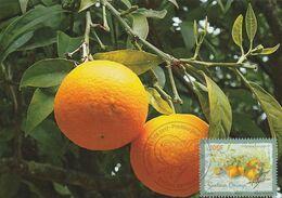 Carte Maximum Fruit Orange OPJ 23/06/2017 Papeete (Polynésie) - Cartoline Maximum
