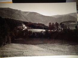 Cartolina Albergo Villa Del Bosco Brunico Prov Bolzano - Bolzano