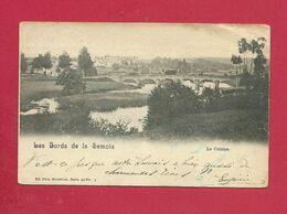 C.P. Lacuisine =  Les Bords  De Meuse   VOIR  ETAT - Florenville