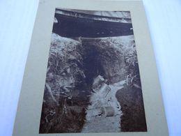 Photo Avril 1915 BOIS DES CHEVALIERS (VAUX-LES-PALAMEIX) - Mortier De Tranchée, Crapouillot (A198, Ww1) - 1914-18