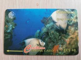DOMINICA   GPT $ 40-  GREY ANGELS      DOM-7C    7CDMC     Fine Used Card  ** 2791** - Dominica