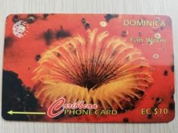 DOMINICA   GPT $ 10-  FAN WORM       DOM-9B    9CDMB     Fine Used Card  ** 2802** - Dominica