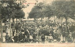 MONTGISCARD La Promenade De La Terrasse - Barbazan