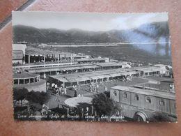 1953 Golfo Di Napoli TERME Lido Azzurro Animatissima - Torre Annunziata