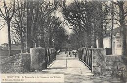 01 - MONTLUEL La Passerelle Et La Promenade Des Tilleuls Animée écrite Timbrée - Montluel