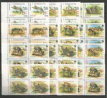 4x SOMALIA - MNH - Animals - Wild Animals - WWF - 1992 - Stamps