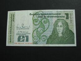 1 One Pound  1989 - IRLANDE - The Central Bank Of Ireland   **** EN  ACHAT IMMEDIAT  **** - Irlanda