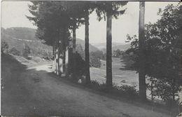 391- C Ph-Route Du Camp D'ELSENBORN Vers Mont Joie - Elsenborn (camp)