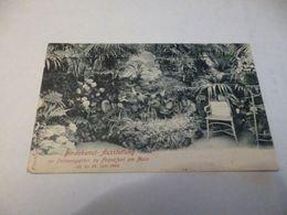 Exposition De Reliure Dans La Jardinerie De Palmiers à Frankfurt Am Main ' Juin 1900 ' Allemagne - Vari
