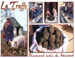 (F 22) France - Champignon Truffe Mushroom / Truffle (with Pig / Cochon) - Hongos