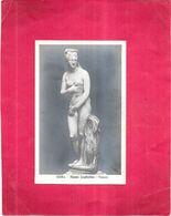 ROMA - ITALIE - Museo Capitolino - VENERE   - GIR - - Musées