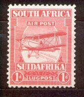 South Africa - Südafrika - 1925 Michel Nr. 17 * - Unused Stamps