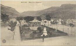 D 12. MILLAU.  PLACE DE LA FRATERNITE - Millau