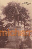 C P A  59 Cassel Statue  Du Marechal Foch - Cassel