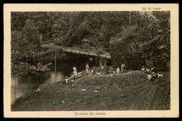 SÃO TOMÉ E PRÍNCIPE - Quebra De Cacau.  ( Ed. M. Lopes) Carte Postale - São Tomé Und Príncipe