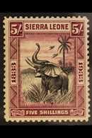 1933 5s Black & Purple Wilberforce - Elephant, SG 178, Very Fine Mint, Fresh. For More Images, Please Visit Http://www.s - Sierra Leone (...-1960)