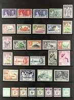 1937-1951 KGVI COMPLETE VERY FINE MINT A Complete Basic Run Including The Postage Due Set, SG 57/80 & D1/D8. Fresh And A - British Solomon Islands (...-1978)