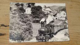 SAINT MARTIN DE VALAMAS : Train Touristique …………………..OK-5345 - Otros Municipios