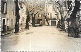 D 83. LA  ROQUEBRUSSANNE. LE CENTRE DU VILLAGE - La Roquebrussanne