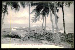 SÃO TOMÉ E PRÍNCIPE -Um Cocoeiro Na Roça Porto Alegro. ( Ed. A. Palanque Nº 37) Carte Postale - São Tomé Und Príncipe