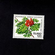1052178223 SCOTT 530 POSTFRIS (XX) MINT NEVER HINGED EINWANDFREI  - MOUNTAIN ASH BRANCH AND BERRIES - 1944-... Repubblica