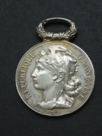 Médaille En Argent - Le Conseil Général Des Bouches Du Rhône  Aux Sauveteurs Du Midi  **** EN ACHAT IMMEDIAT **** - Royaux / De Noblesse