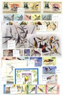 BIRDS UM Collection Of Stamps & M/Sheets Housed In Three Stock Books, Strength With British Commonwealth & French Coloni - Timbres