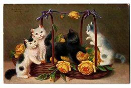 CHATS DANS PANIER DE ROSES CARTE COULEUR TRES ANIMEE - Katzen