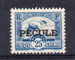 !!! FISCAL D'INDOCHINE PECULE N°17 NEUF * - Autres