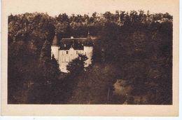 ISERE - Château De SAINT-PIERRE-de-PALADRU - France