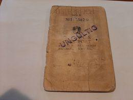 1948 Austria Passport Passeport Reisepass Issued In Melk With Visas Of AMG AHCPO Italy Yugoslavia Germany Revenues - Documenti Storici