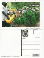 Livraison De Regimes De  Bananes à Vélo En Ouganda.  Uganda A Land Of Warm Hospitality.  Carte Neuve Non Circulée - Liberia