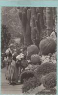 CPA:  Plantes Exotiques Et Costumes Monégasques (MONACO)  (photo Véritable)  (G74) - Cactus