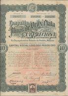 COMPAGNIE DE LAS MINAS DE ORO Y PLATA  LA PRECIOSA -MEXIQUE -LOT DE 3 ACTIONS  ANNEE 1909 - Mines