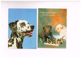 "Lot De 8 Cartes ""CHIENS"" - Honden"