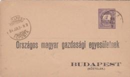 Hungary Postcard 1894 - Oblitérés