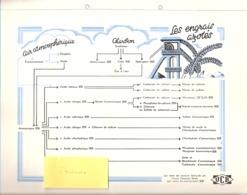 Publicité-+/-1950-Union Chimique Belge(UCB)-Les Engrais Azotés Pour L'Agriculture-Chimie-formule-Engrais-planche A4 - Reclame