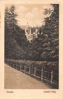 Romania Sinaia Castelul Peles, Castle 1928 - Romania