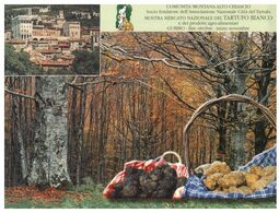 (G 5) Italy - Truffe (black & White) - Truffles Mushroom (with Stamp & Special Postmark) - Hongos