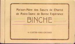 (BINCHE) « Maison-Mère Des Sœurs De Charité De Notre-Dame De Bonne-Espérance » - Carnet De 14 CV - Binche