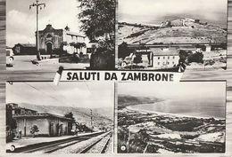 06/FG/20 - VIBO VALENTIA - ZAMBRONE: Saluti Da, Con Vedutine - Vibo Valentia