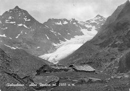 "8769"" VALMALENCO-ALPE VENTINA Mt. 2000 S.m. ""-CARTOLINA POSTALE  ORIGINALE SPEDITA 1954 - Sondrio"