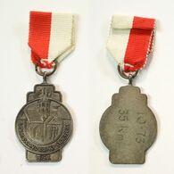 Médaille De Marche_139_Belgique, Adegem, Wandeling, 1973, 35 Km - Bélgica