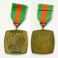 Médaille De Marche_154_Belgique, Wetteren, Wandeling, 1975, 21 Km - Bélgica