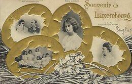 Luxembourg / Souvenir De Luxembourg -> écrit (carte Relief) - Grand-Ducal Family