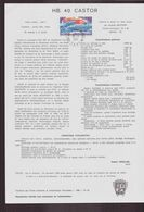 """TAAF, Document De La Poste Du 18 Mars 1981 Port Aux Français Kerguelen """" HB. 40 Castor """" - Terres Australes Et Antarctiques Françaises (TAAF)"""