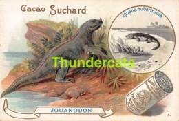 CHROMO CHOCOLAT CACAO SUCHARD SERIE ANIMAL ANIMAUX PREHISTORIQUE  ANIMAL ANIMALS PREHISTORIC - Suchard