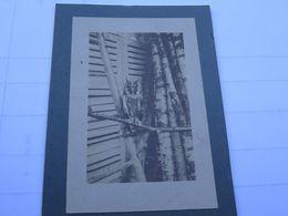 Photo Août 1915 Le Hibou D'un Détachement Télégraphique (A198, Ww1, Wk 1) - Guerra, Militares