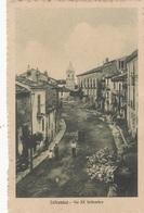 Basilicata - Potenza - Latronico - Via XX Settembre - F. Piccolo - Viagg - Bella Animata - Italie