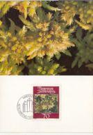 PLANTS, BLUNT LEAVED BOGMOSS, CM, MAXICARD, CARTES MAXIMUM, OBLIT FDC, 1981, LIECHTENSTEIN - Vegetales